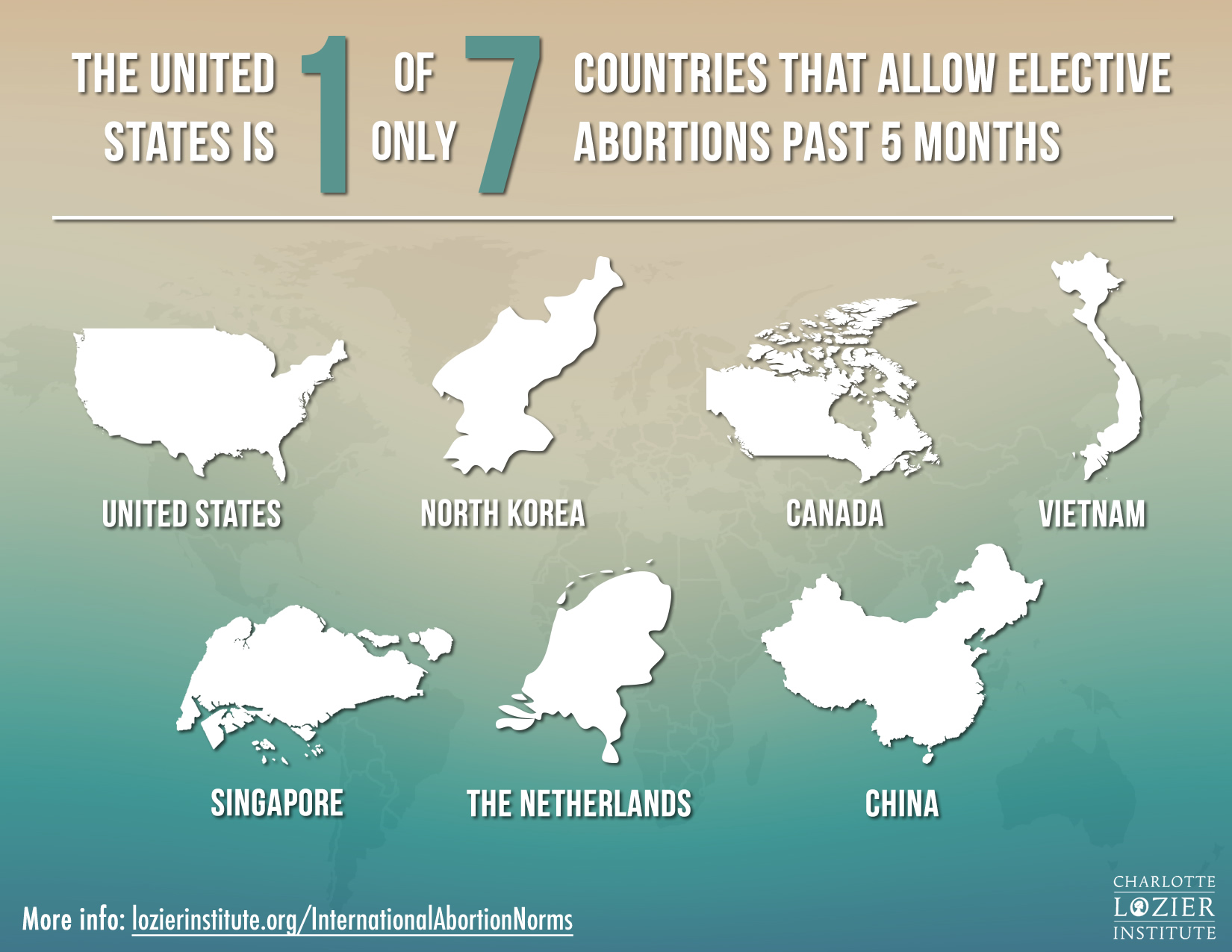 Countries allowing elective abortions past 5 months